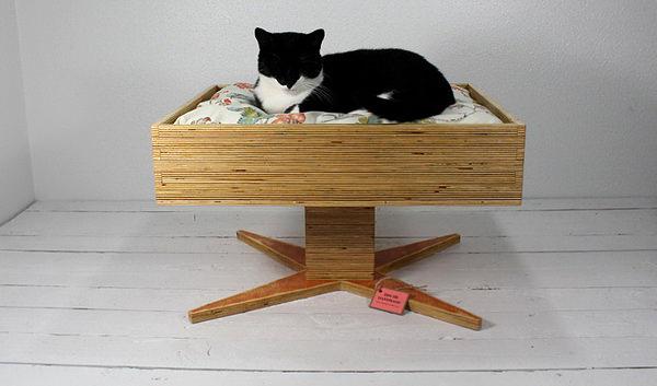 Culcus pentru pisici #1