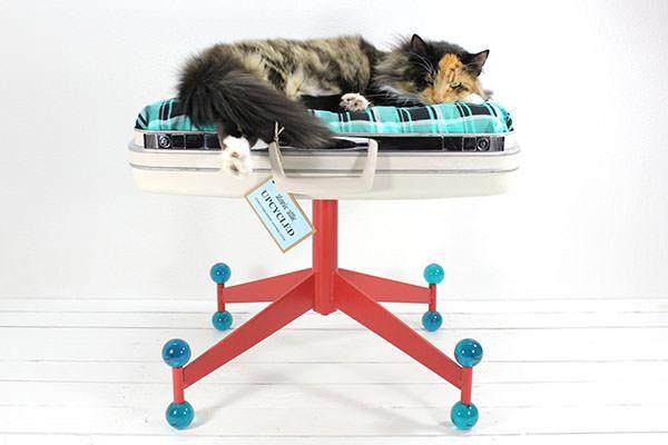 Culcus pentru pisici #10