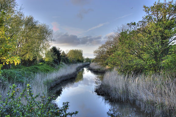 Alverstoke Creek, Hampshire