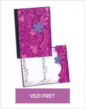 Jurnal Disney Violetta