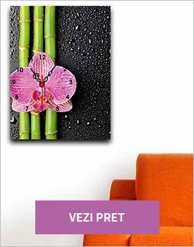 Tablou Pink Bamboo