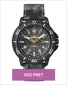 Ceas Timex Expedition gri