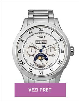 Ceas Timex SL Automatic gri