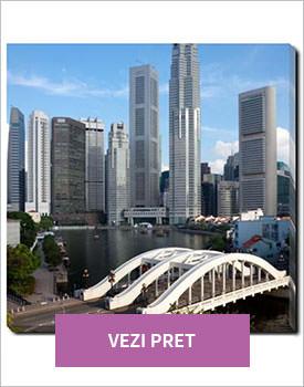 Tablou Elgin Bridge in Singapore