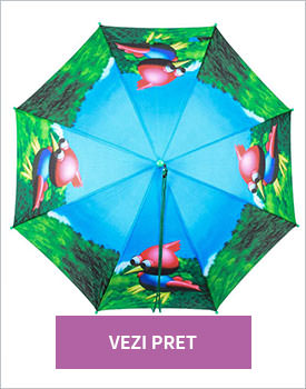 Umbrela pentru copii Bird