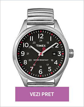 Ceas Timex Originals argintiu