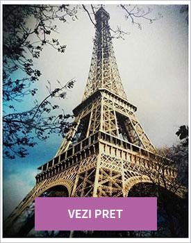 Tablou Eiffel Tower