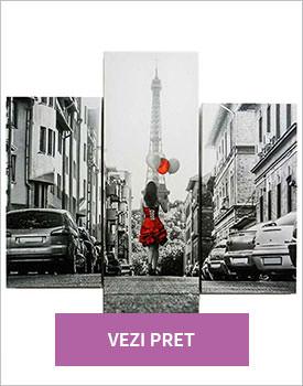 Set 3 tablouri Paris