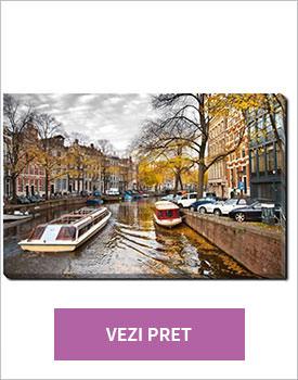 Tablou Autumn in Amsterdam