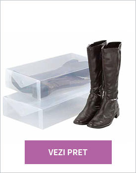 Set 2 cutii depozitare cizme Transparency