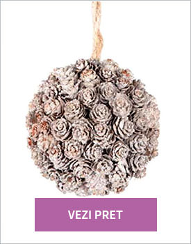 Glob decorativ Pine cones