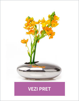 Vaza Pebble silver