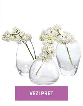 Set 6 vaze George