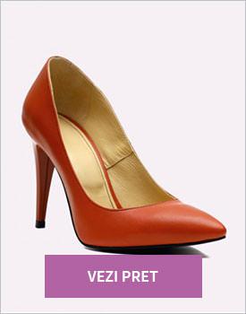 Pantofi stiletto din piele Zily