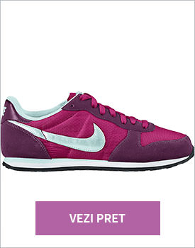 Pantofi sport Nike Genicco