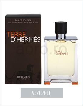 Apa de toaleta Terre D'Hermes