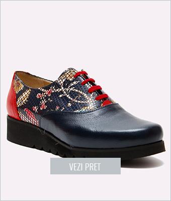 Pantofi Roa dama piele naturala